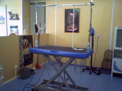 Ma Table Mon Outil De Travail Estheti Chien Mon Salon De