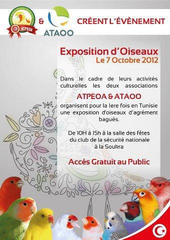 Exposition D'oiseaux En Tunisie