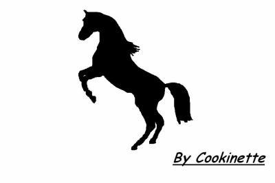 Cheval blog de mes dessins - Coloriage cheval qui se cabre ...