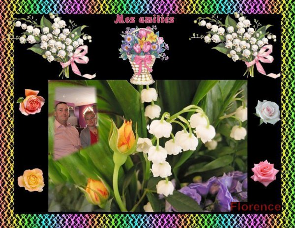 cadeaux de florencedu06 /insomnie62 /sylvie166 /uline1 /thewomanclass /13-l-amitie-des dauphins