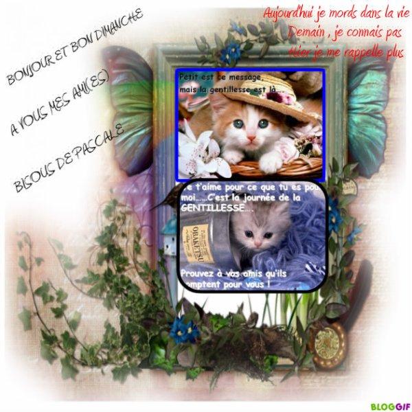 bonjour et bon dimanche mes ami(es)pts chats kdos reçu de mon ami francis merci a toi )
