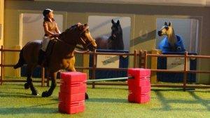 Photo show concours saut
