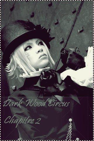 Dark Wood Circus