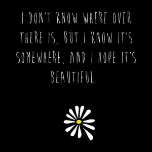 Looking for Alaska ?