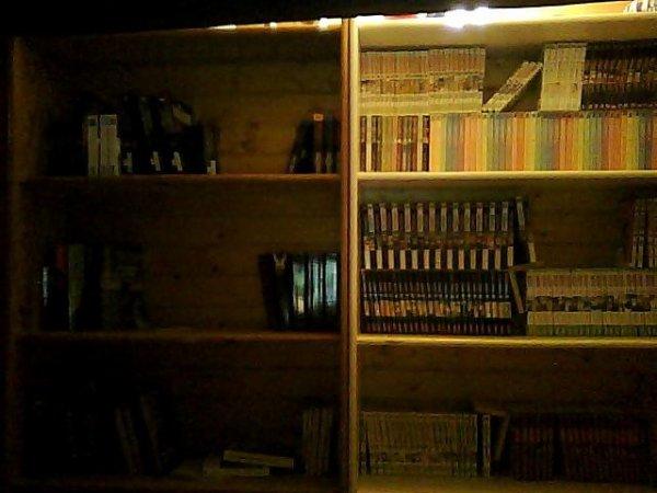 "ma ""petite"" bibliotech ^^"