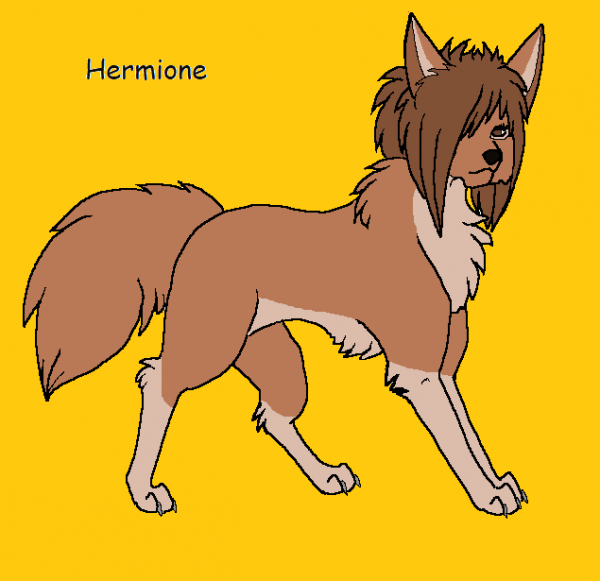 Hermione Wolf Version