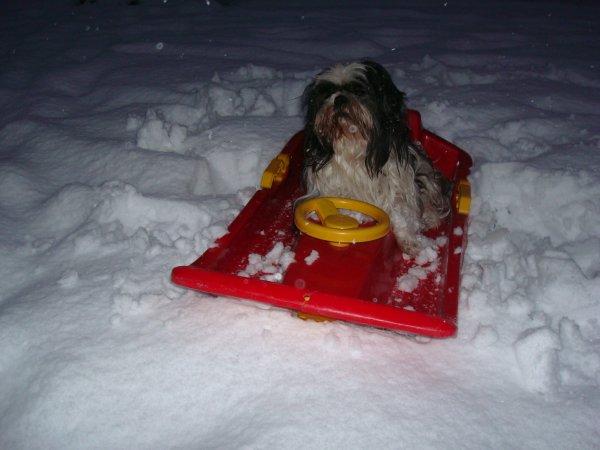 Titeuf à la neige :-)