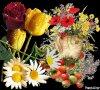 BONNE SEMAINE ET BON WEED END A TOUS MERCI A TOUS MES AMI (es) D ETRE SINCERE 11000 COMS