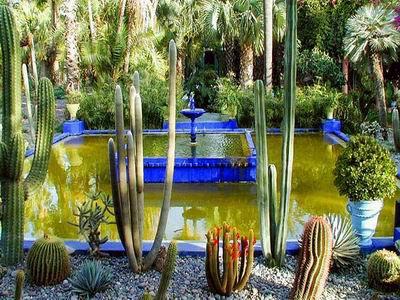 jardin majorel à Marrakech