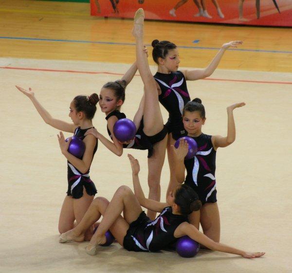 Saison 2012-2013 : les ensembles