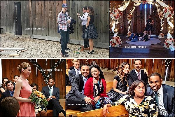 Voici des photos du 10X12 de Grey's Anatomy diffuser hier soir ou l'on y voit Camilla dessus Voici 3 photos de Camilla a son dernier évenement datant de Novembre
