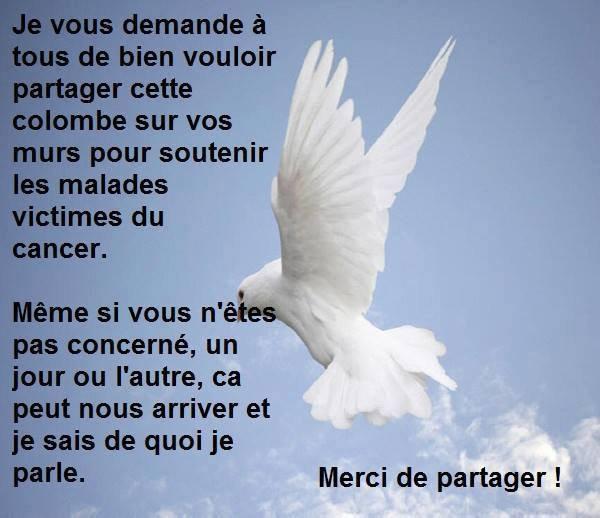 Lutte contre le cancer...