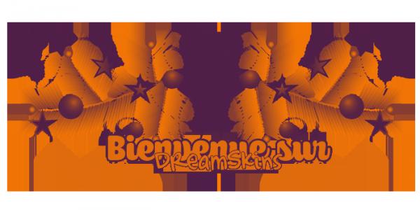 ♥ Bienvenue sur DreamSkins ♥