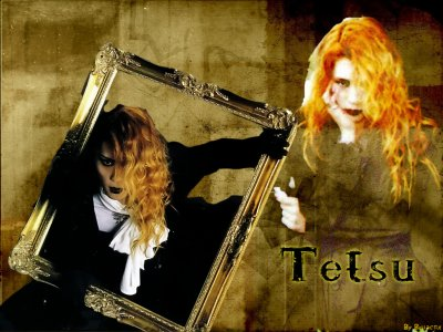 Tetsu(ex malice mizer)
