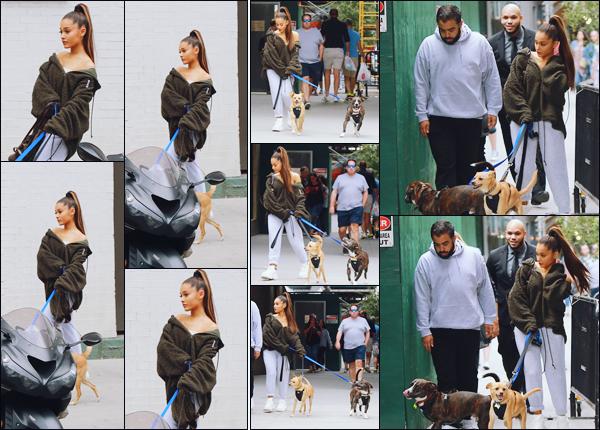 -22/09/18 •- C'est de bon matin que Ariana Grande est aperçue promenant ses chiens dans la ville de New York ! En effet ce jour la, la chanteuse était en compagnie de son chien Toulouse, mais aussi du chien de Mac Miller : Myron qu'elle à adopté suite à son décès.