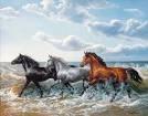 encore des chevaux