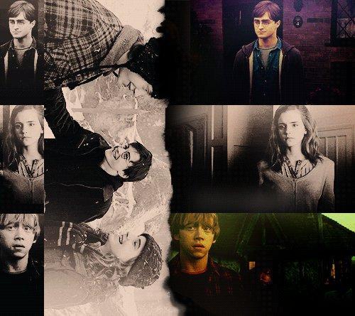 « Ce sont nos choix, Harry qui montrent ce que nous sommes vraiment, beaucoup plus que nos aptitudes. »