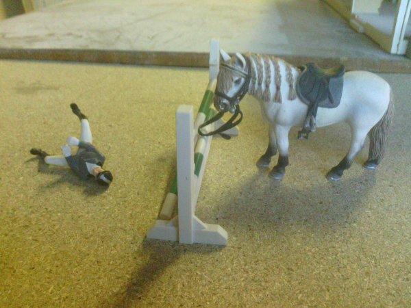 """"""" Qui est tombé de cheval dit à l'âne qu'il a voulu descendre """""""