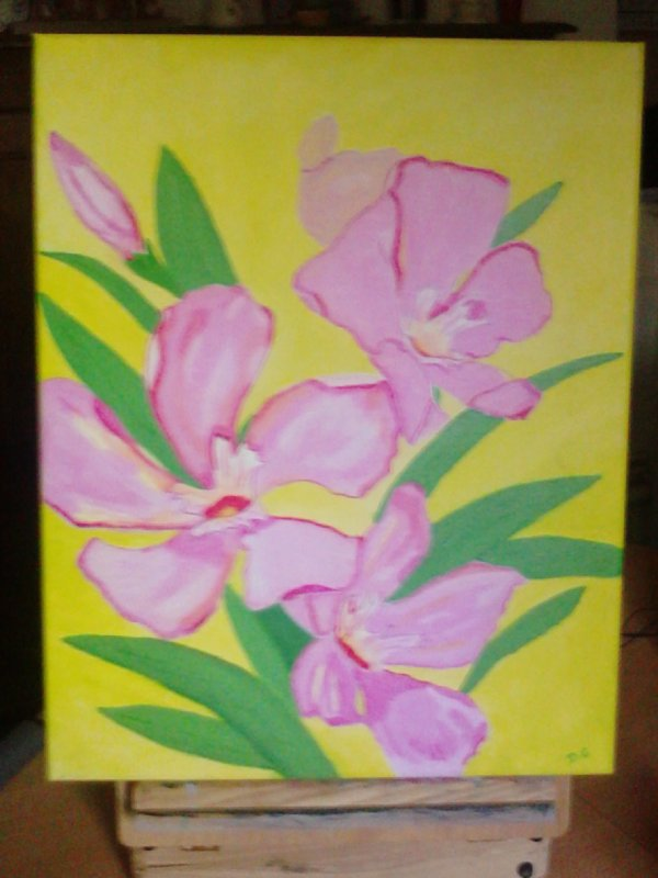 peinture acrylique sur chassis toilés (série fleures)