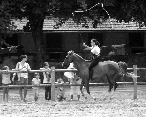 Equestria