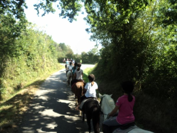 Notre meilleur moment : la randonnée régionale poney 2013 Pays de Loire