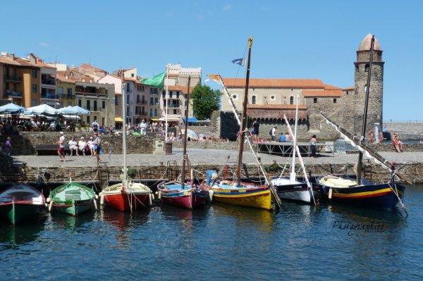 Les bateaux du port de Colioure