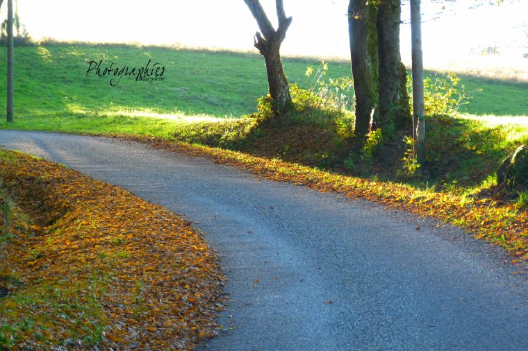 Je suis mon chemin malgré les obstacles