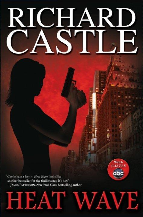 (¯`•._) Castle (¯`•._)
