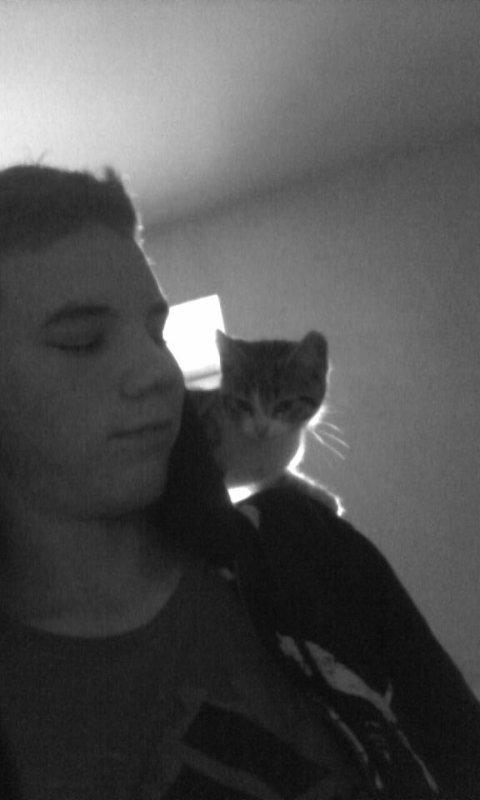 moi et mon chat lol