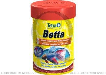 Nourriture les bettas for Nourriture combattant