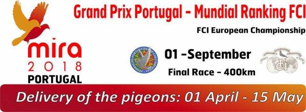 Les pigeons Picards sont partis pour Mira