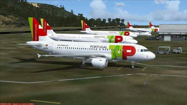 Fsx aterissage sur l'aéroport  de madère venant de Lisbonne  ( a319 tap Portugal )