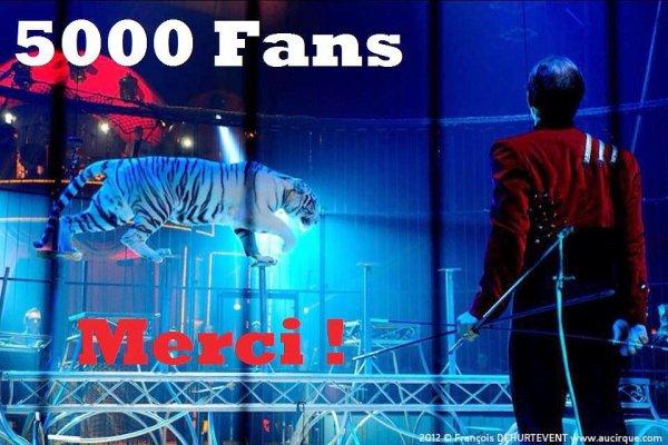 """BES présente : """"WHITE TIGERS"""", le tout nouveau spectacle du cirque PAUWELS !!!"""