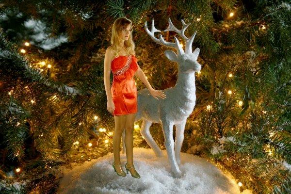 """IVANA vous souhaite un """"JOYEUX NOEL"""" - """"MERRY CHRISTMAS"""" 2013"""