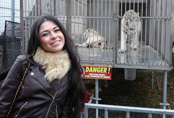 Reportage BES - GOLD FM au Cirque Pauwels avec Asye (Assia)