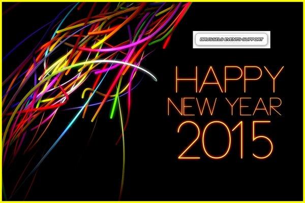 HAPPY NEW YEAR 2015 - BONNE ANNEE 2015 - YENI YILNIZ KUTLU OLSUN 2015