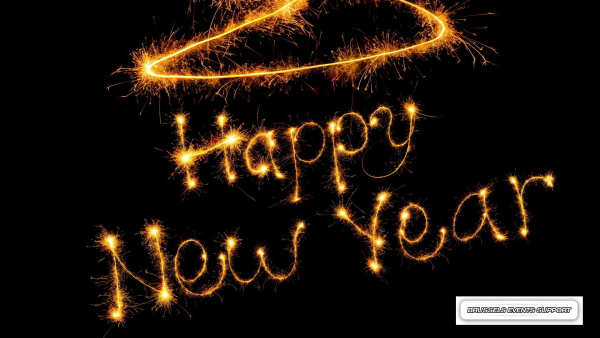 Bonne année 2016 - Happy New Year from de BES team !