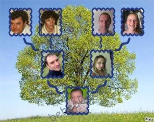 son arbre