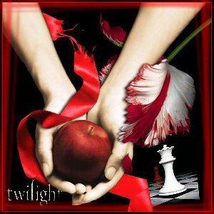 Blog de Repertoire-Twilight-00