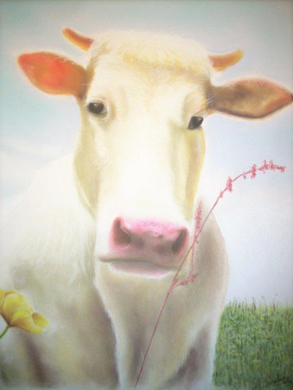 oh la vache!!! ^^