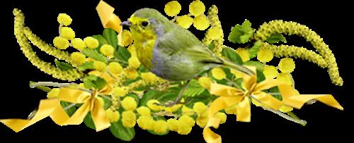 (l)⋱ ღﻼ✿ Février le temps du renouveau et des couleurs lumineuses✿ﻼಌ⋰(l)