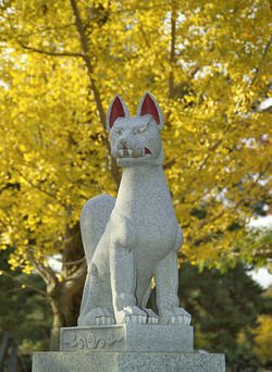 Kitsune : Le renard