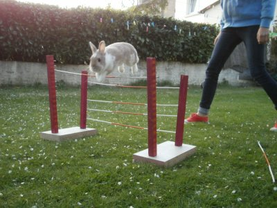 Un peut de saut !!