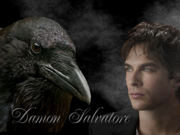 Damon Salvatore ::