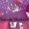 Sakura-Mashiro