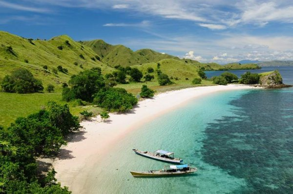 *THE KOMODO ISLAND, INDONESIA*