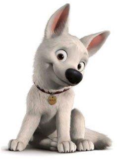 Volt le super chien blog de biibii - Race chien volt ...