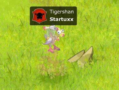 Startuxx