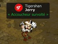 Dofus : Les Aventures de Jerry sur Domen!
