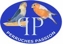 Photo de PERRUCHE-PASSION
